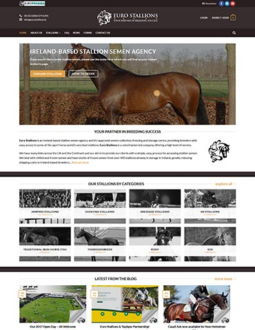 Euro Stallions Website Design